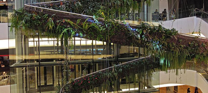 Verde verticale e giardini pensili: i vantaggi per la tua casa ...